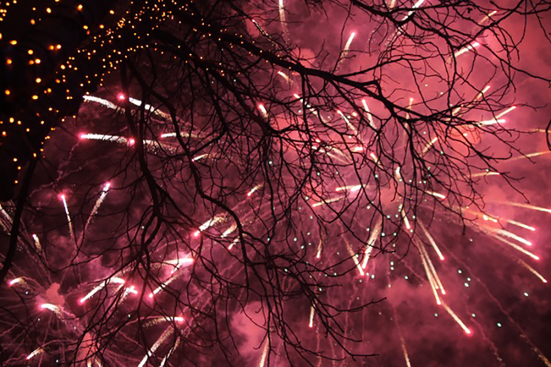 Festive night beautiful fireworks HD picture 04
