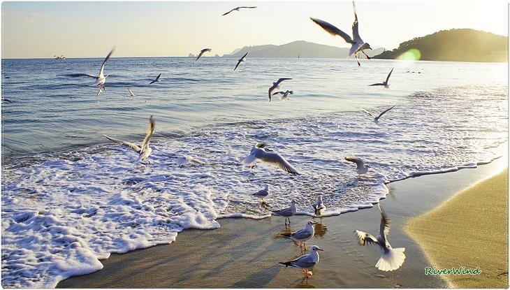 봄이오는 해변