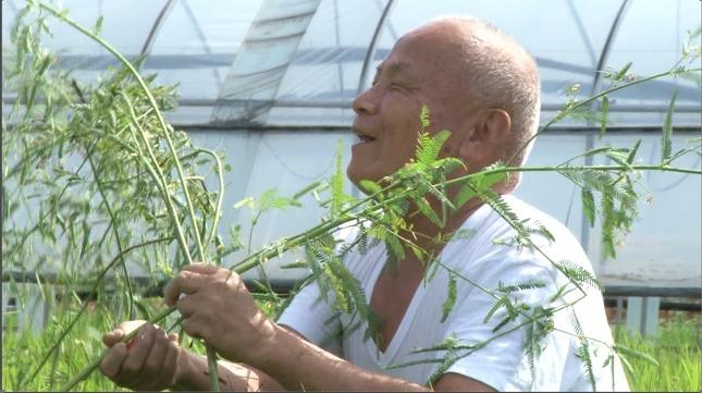 시각장애인 농부 곽노성 할아버지