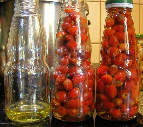 ▲ 들장미 열매 주스 병조림 준비 과정