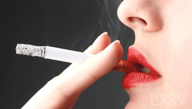 <임신> 임신과 흡연(담배). 흡연이 임신에 주는 영향은?