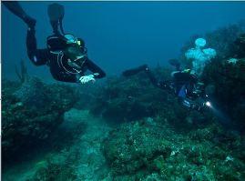 Magnetic Island Wasser Tr Ef Bf Bdb