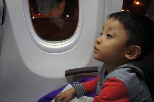 말레이시아 항공 기내식- 키즈밀과 과일식