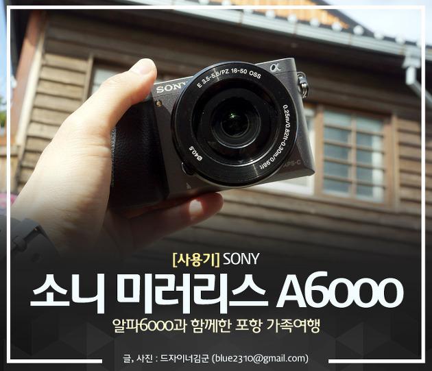 알파 6000