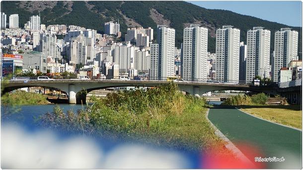 온천천에서 보는 장산과 아파트