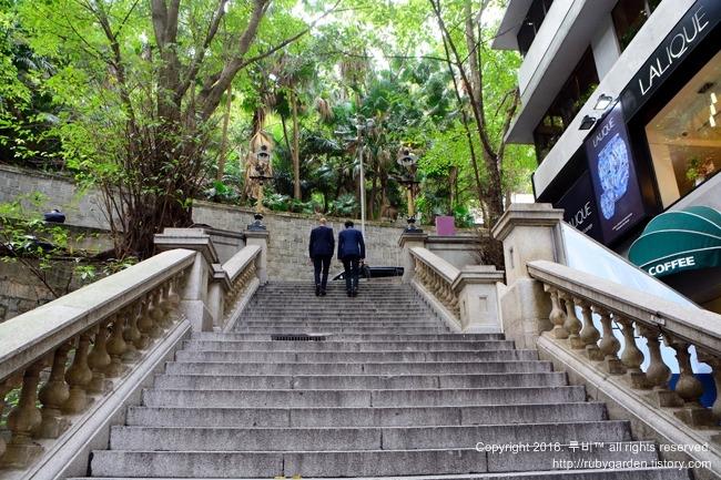 홍콩 여행 / 별들이 소곤대는 홍콩의 밤거리, 홍콩 유일의 가스등 거리 더들스트리트