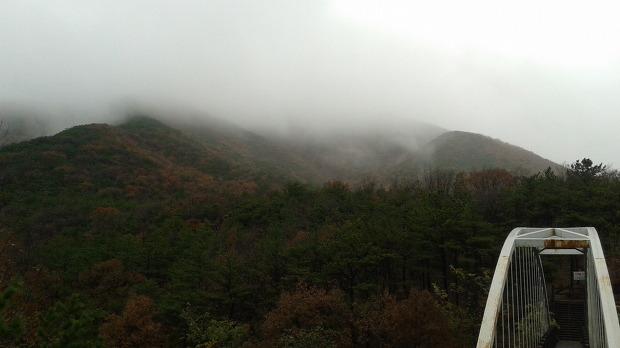 진달래 핀 겨울 문턱 김포 문수산