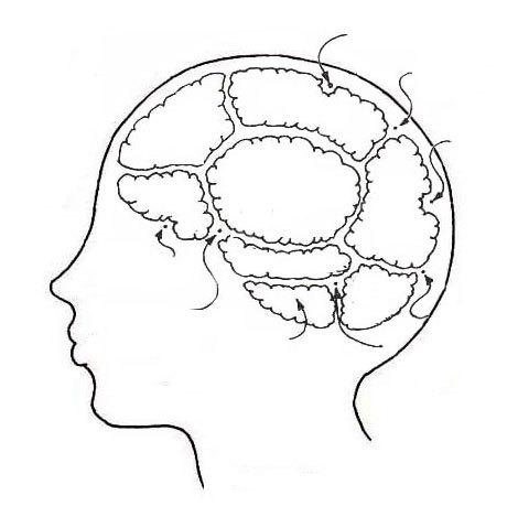 눈치역량, 작업기억, 작업기억용량, 이기적인 이유, 남의 입장 생각, 역지사지, 뇌용량