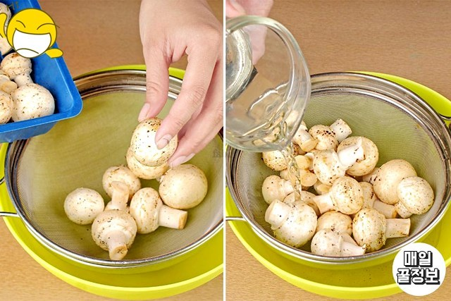 양송이버섯보관법 생활 꿀팁 주방 송이버섯 팽이버섯 이마트 홈플러스