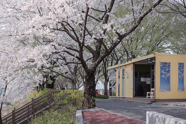 서울 동대문구, 공공: 작은 도서관