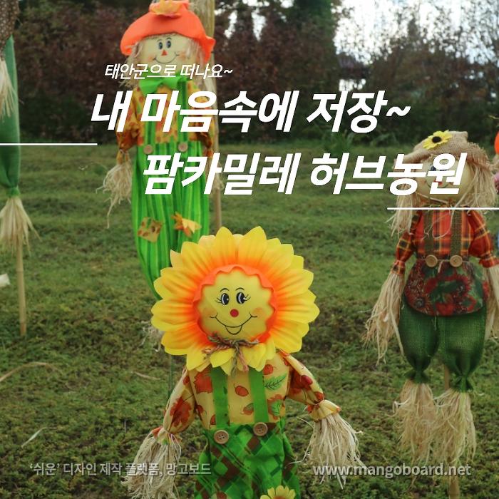 태안군여행 팜카미리레 허브농원