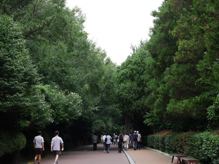 해운대 동백공원