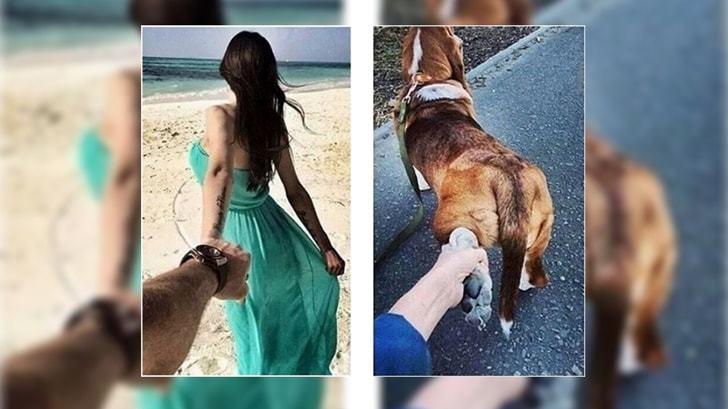 무심코 지나쳤던 강아지(반려견) 행동 의미와 심리상태 10가지