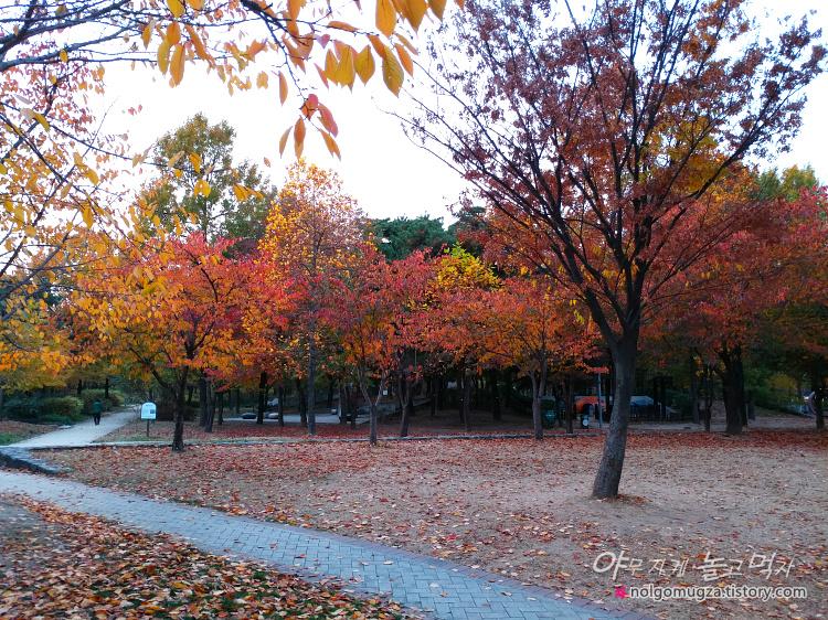 서울숲 단풍 2