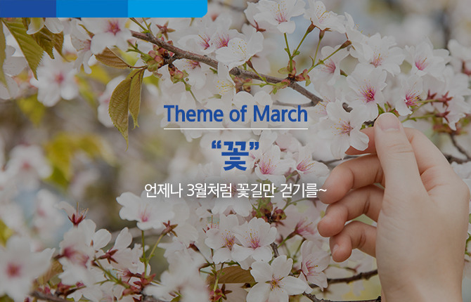 벚꽃 꽃 꽃길 3월