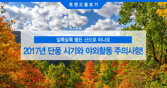 단풍 절정 시기와 가을철 야외활동 주의사항
