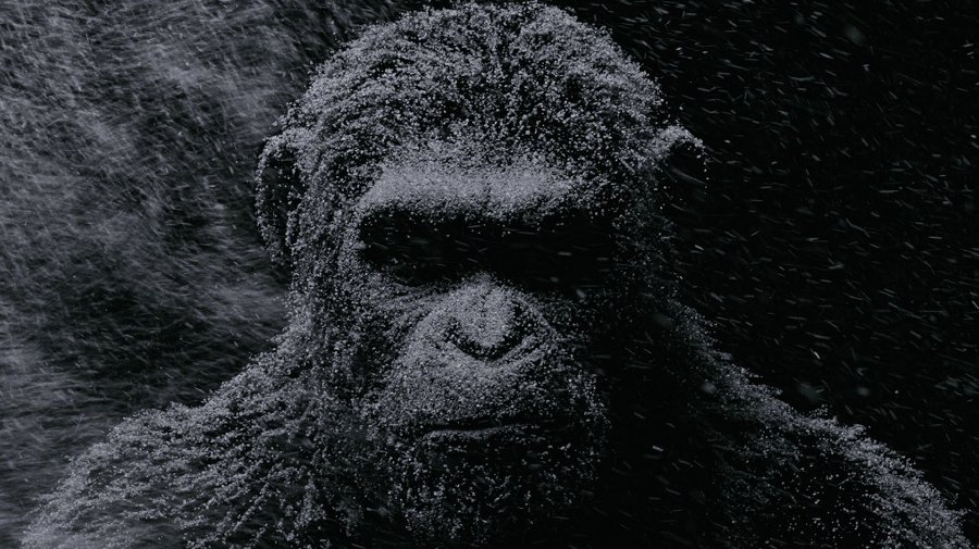 [BP/MOVIE] 왜 제목이 혹성탈출일까? 혹성탈출 - 종의 전쟁(War for the Planet of the Apes 2017)
