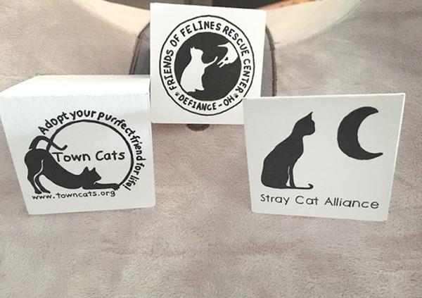 고양이 보호 단체에 기부한 증서