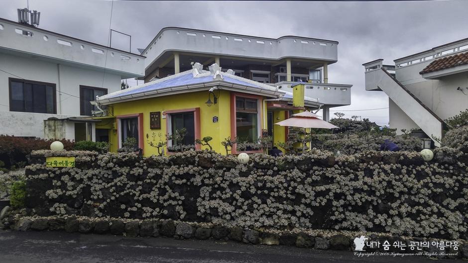 제주도의 이색 볼거리, 다육이로 가득 찬 집안 풍경