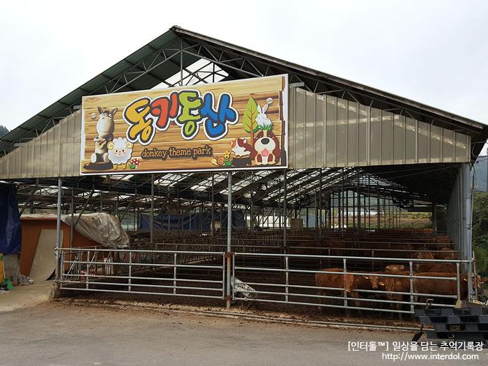 [2017-10-01] 당나귀들이 많은 곳. 이천 동키동산