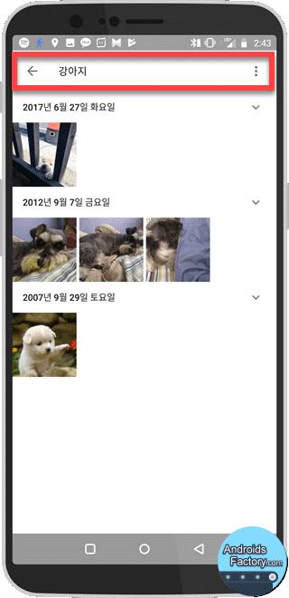 인공지능 구글 사진 동기화 강아지 검색