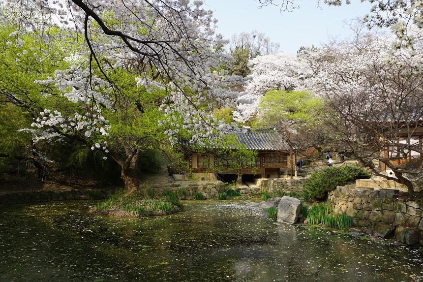 대전여행명소 우암사적공원 남간정사