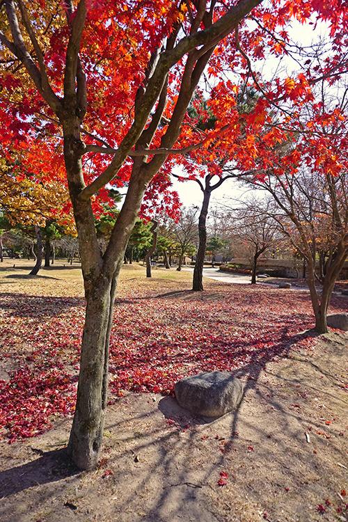 가을에즐긴 겨울