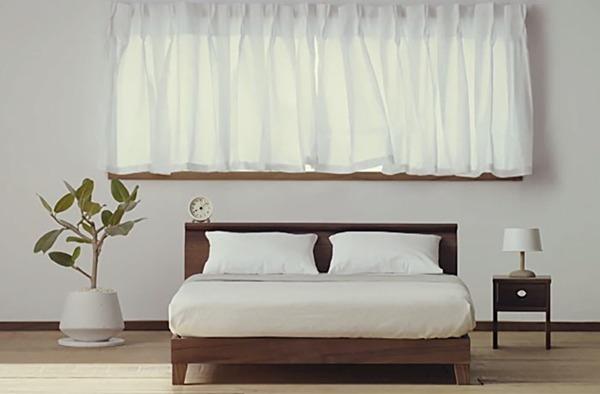 편안해 보이는 고양이 침대